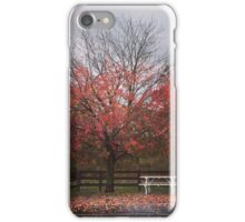 Autumn scene in Amish Country iPhone Case/Skin