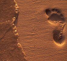 Footprint by TrueBavarian