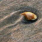 Grains of Sand... by Jason Anderson