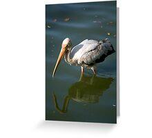 Bird walking through water Greeting Card