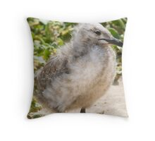 Baby Seagull Throw Pillow