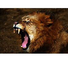 Raw Majestic Power Photographic Print