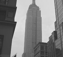 Empire State Building by IslandImages