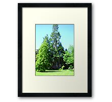 Armadale Castle grounds Framed Print