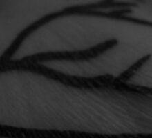 Black Veins by lozza