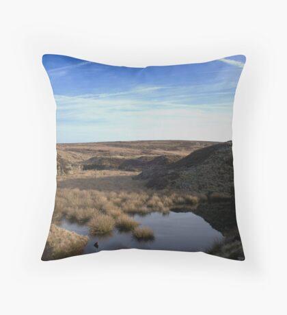 Danebower Quarry Throw Pillow