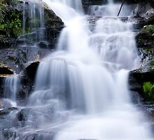 Leura Cascades - Blue Mountains, NSW, Australia by Gayle Shaw