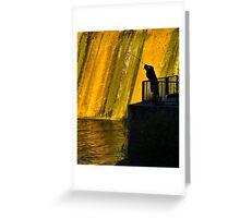 Fishin' the Dam Greeting Card