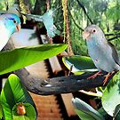 Parrotlet Birds Tropical Rain Forest Photograph digital art by Rick Short