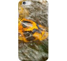 Koi in the ripples of a waterfall iPhone Case/Skin