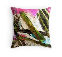 Storm Cellar Door Throw Pillow