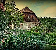 And I'll watch my garden grow by Kurt  Tutschek