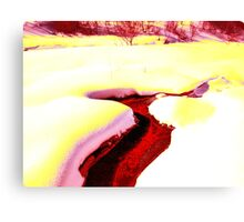 Water? Canvas Print