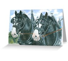 Horse team Greeting Card