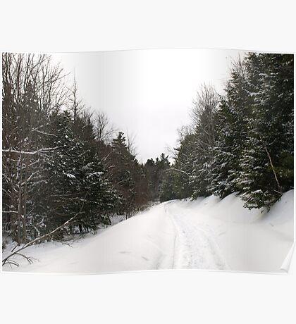 Such a winter wonderland Poster