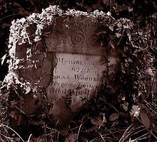 Forgotten by Tigger