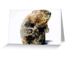 BEAVER TALKING Greeting Card