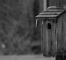 Birdhouse by Bahoke