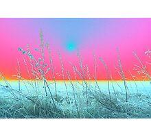 Frosty Morning ( photoshopped ) Photographic Print