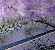 Purple bridge in Pa. by suelucat