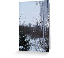 February Icicles Greeting Card