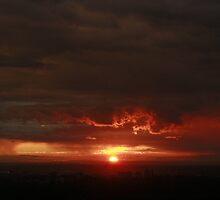 Red Sydney by LanaJaneBeck