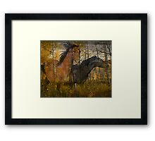 Phantom Grove Framed Print