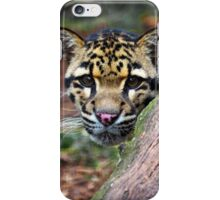 Face of a Clouded Leopard iPhone Case/Skin