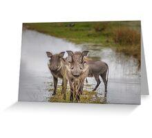Warthog Island Greeting Card