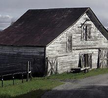 Westside Barn by saynine