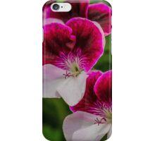 Delphinium White & Red Splash iPhone Case/Skin