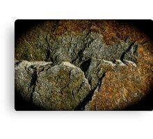 Rock Vignette Canvas Print