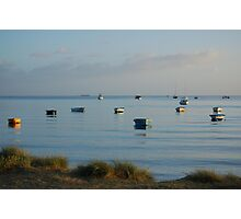 Boats at Cameron's Bight. Photographic Print
