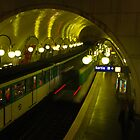 Sur le Metro by peter reid