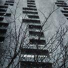 Winter Series Tower Block by Nikki Smith