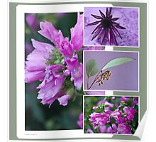 Pink, Purple And Green Photo Collage  Poster