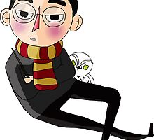 Harry Pottah by thescudders