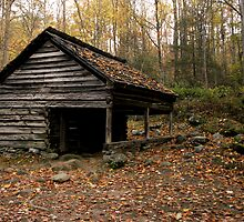 Roaring Fork Log Barn  by shotzbyjay