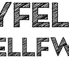 Rhyfelwr Byseddfwrdd by Hywel Edwards