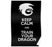 Keep calm and train your dragon WHITE FONT Poster