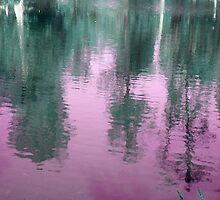 Reflection in Purple by Rebekah  McLeod