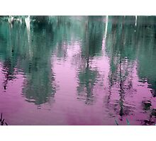 Reflection in Purple Photographic Print
