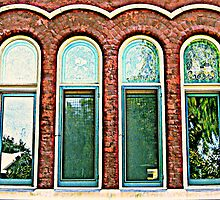Old Windows by Roger Sampson