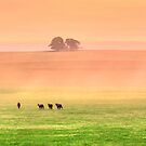 Paradise Pasture by Neophytos