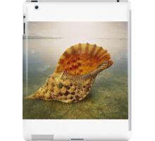 Sea Shell on the Rocks iPad Case/Skin