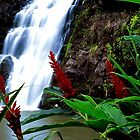 waterfall in Hawaii by chord0