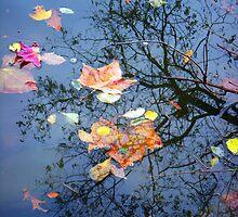 Paper Leaves by JMacsRUs