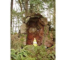 Our Lady of the Forest Photographic Print