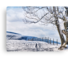 The Snow - The Fence - The Tree Metal Print
