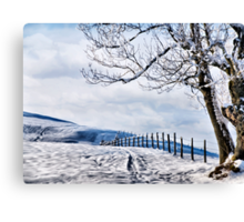 The Snow - The Fence - The Tree Canvas Print